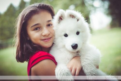 Yéti, un chien de race Samoyède